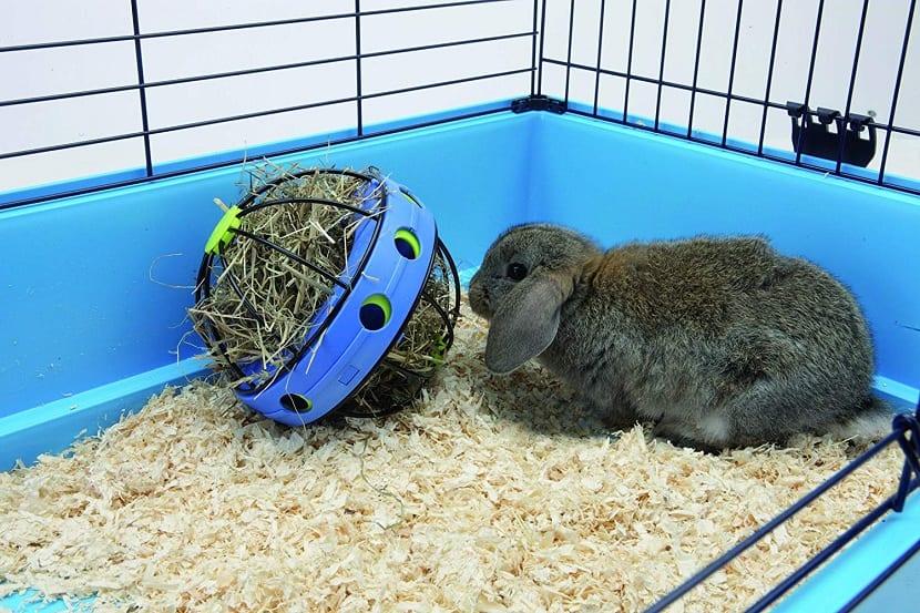 Bola de heno como juguete para conejo