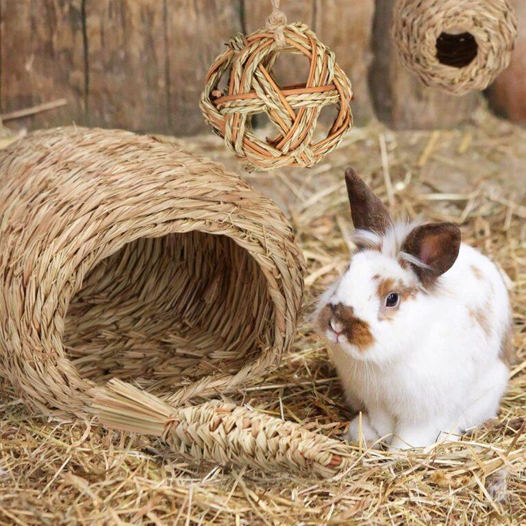 Nido para conejos